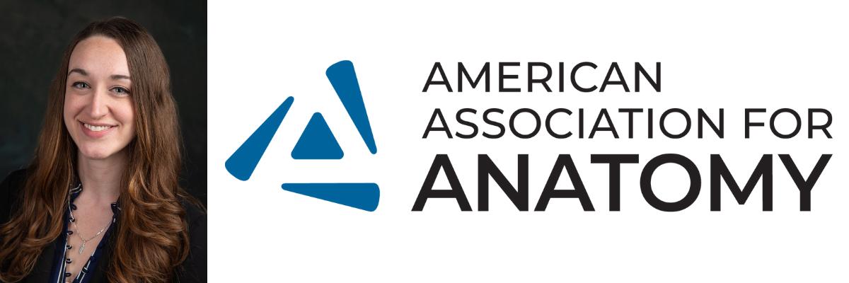 Allie AAA news header
