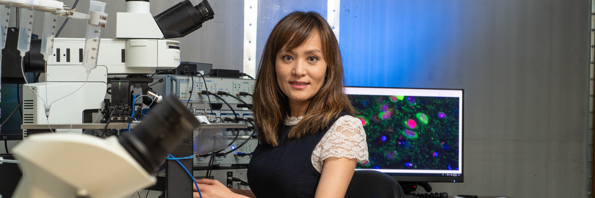 Yang Lab Publishes Strategies for Potential Therapies of Autism
