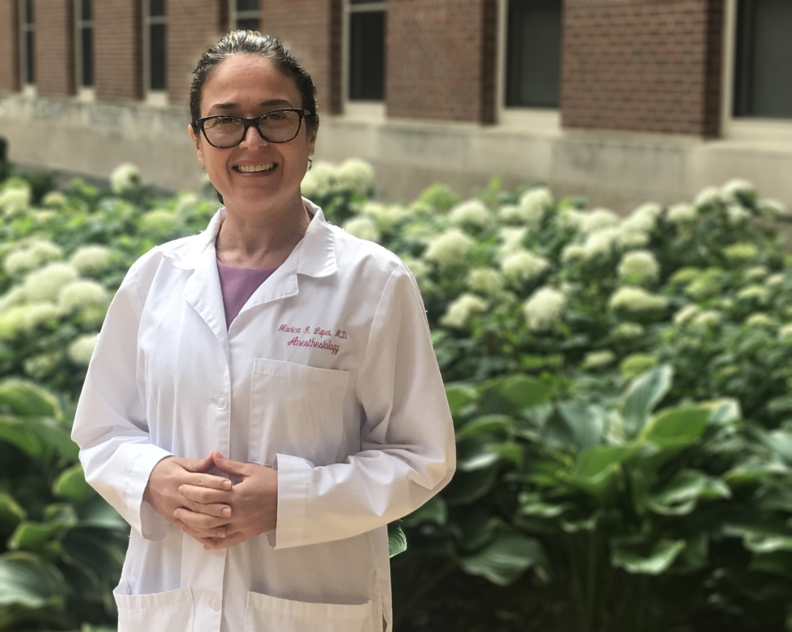Dr. Monica Lupei