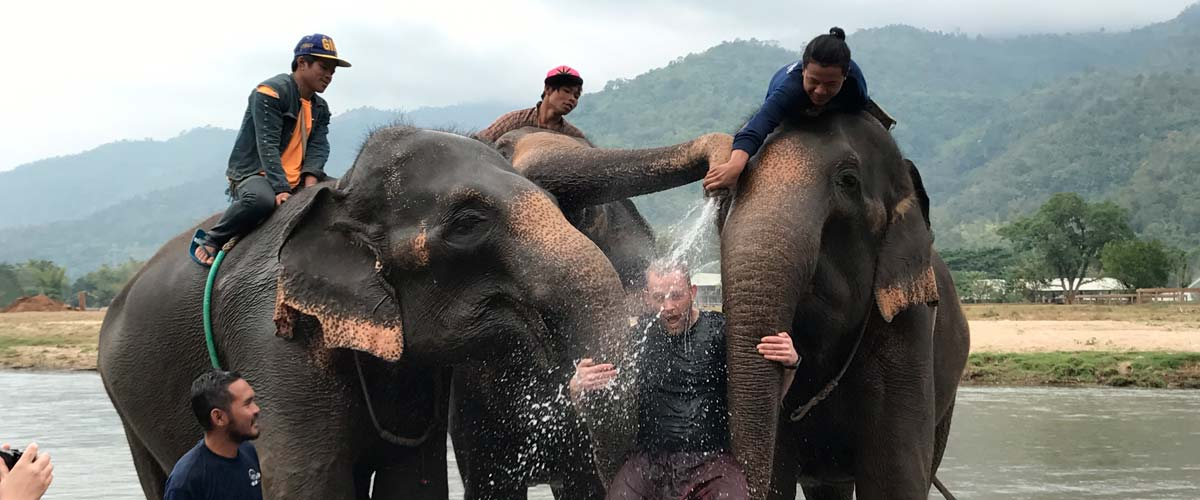 People in water playing with elephants