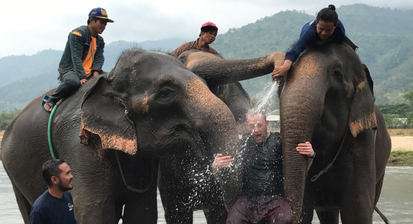 People playing in water with elephants