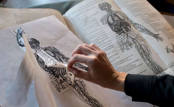 Students can learn about anatomy  as their colleagues did centuries ago, using a reproduction of an anatomy flip book by Andreas Vesalius.