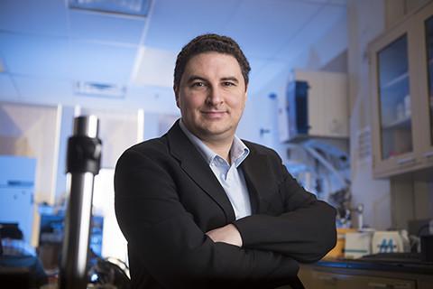 Michael McAlpine, PhD, Professor of Mechanical Engineering