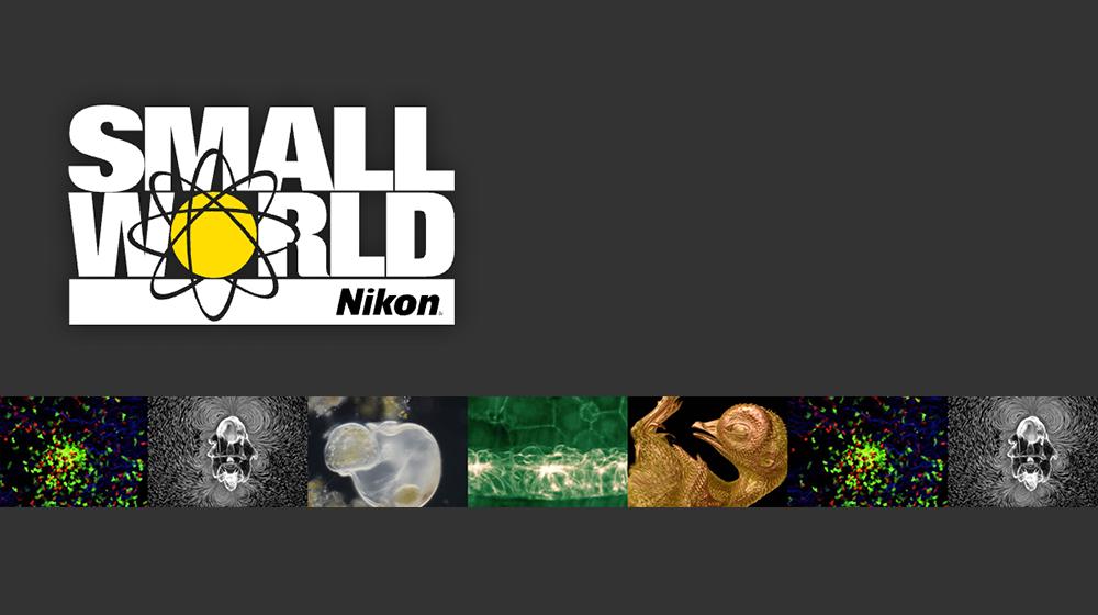 NikonSmallWorld
