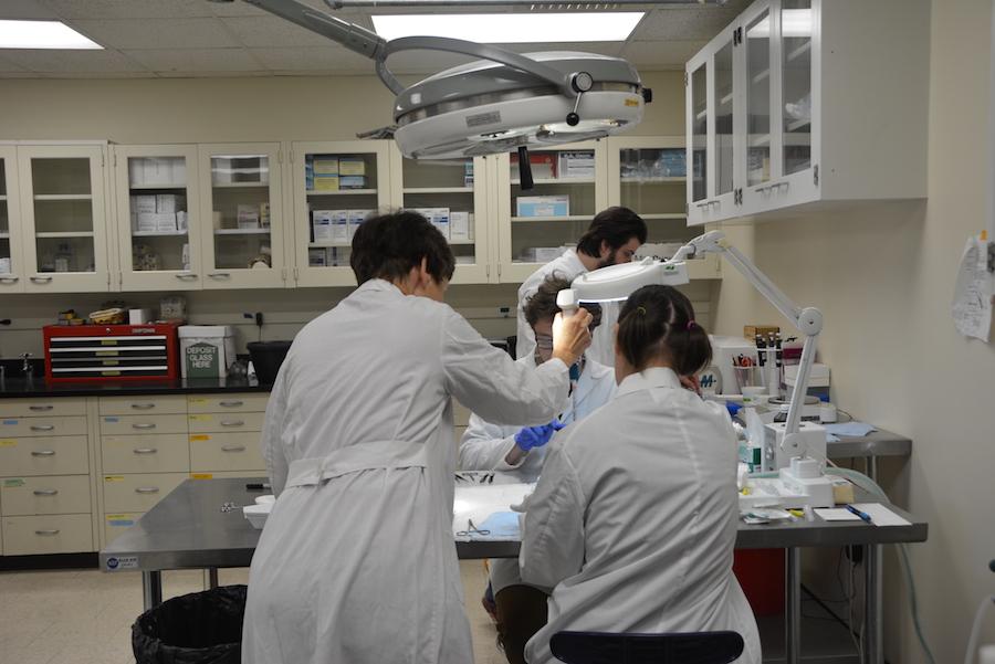 Duluth campus Regal Lab