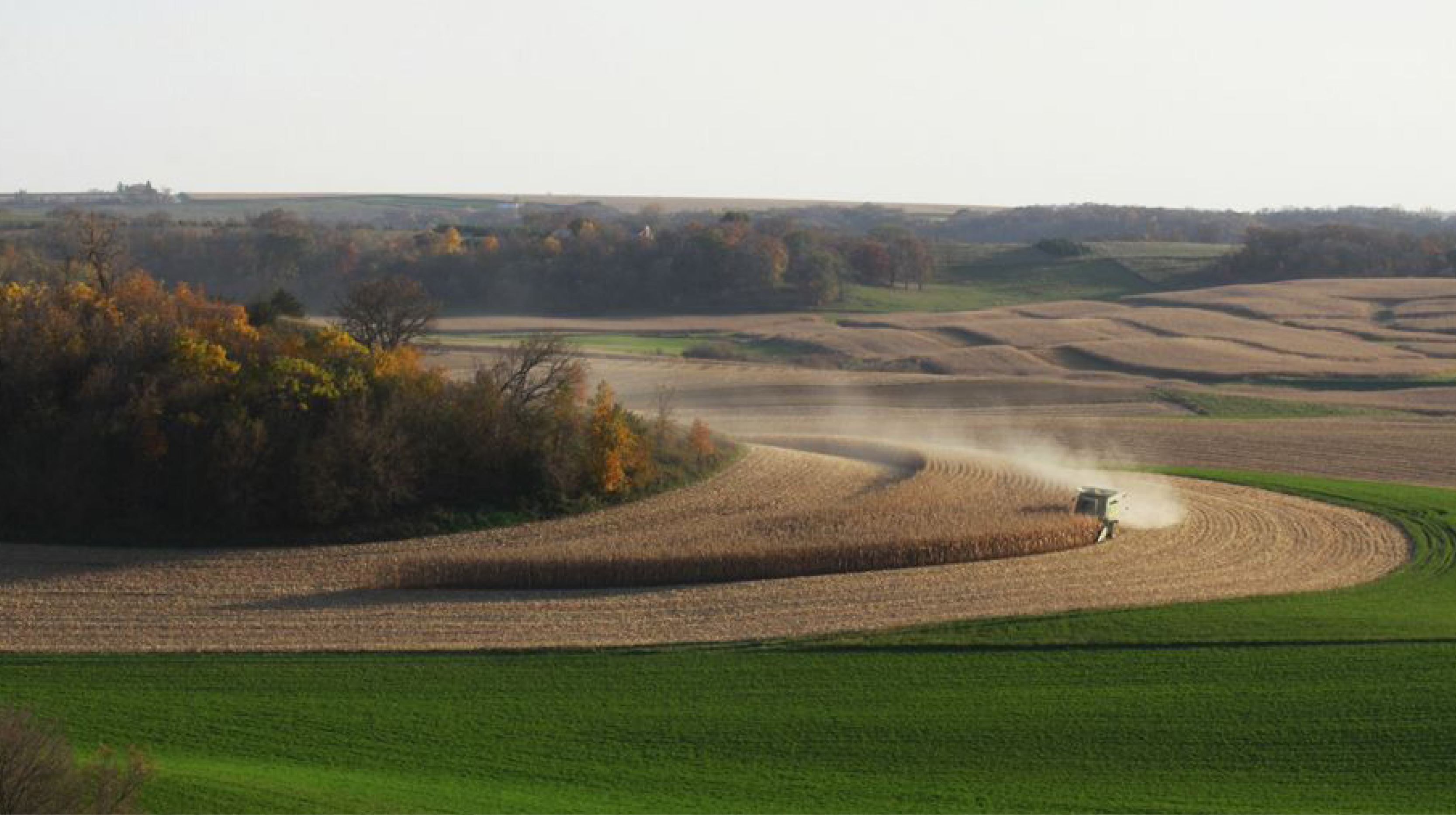 Rural Minnesota Community