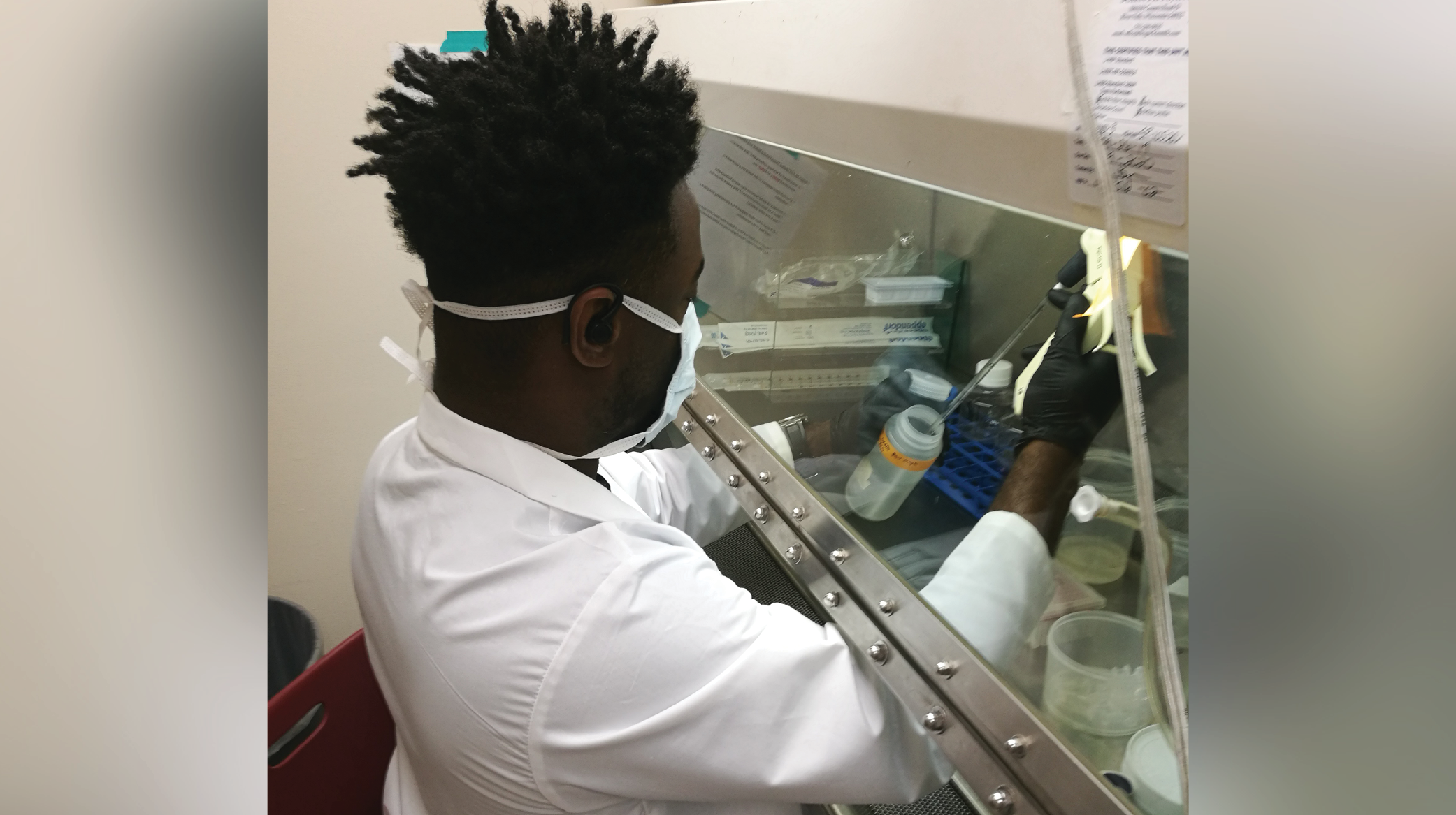 Dr. Simmons in the laboratory