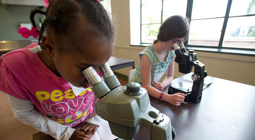 elementary students looking in microscopes