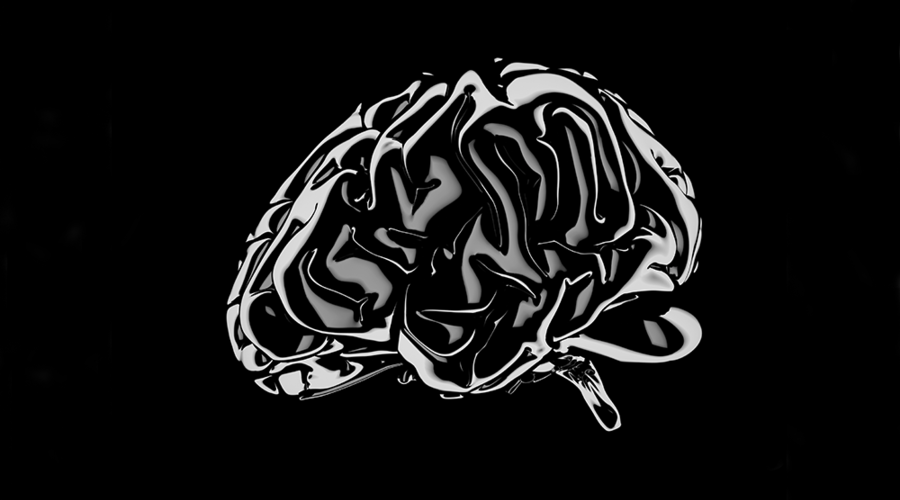 An illustration of a brain.