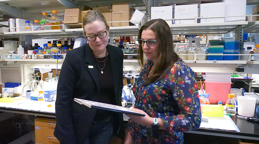 Carol Lange and a colleague standing together looking at a clipboard in the lab.