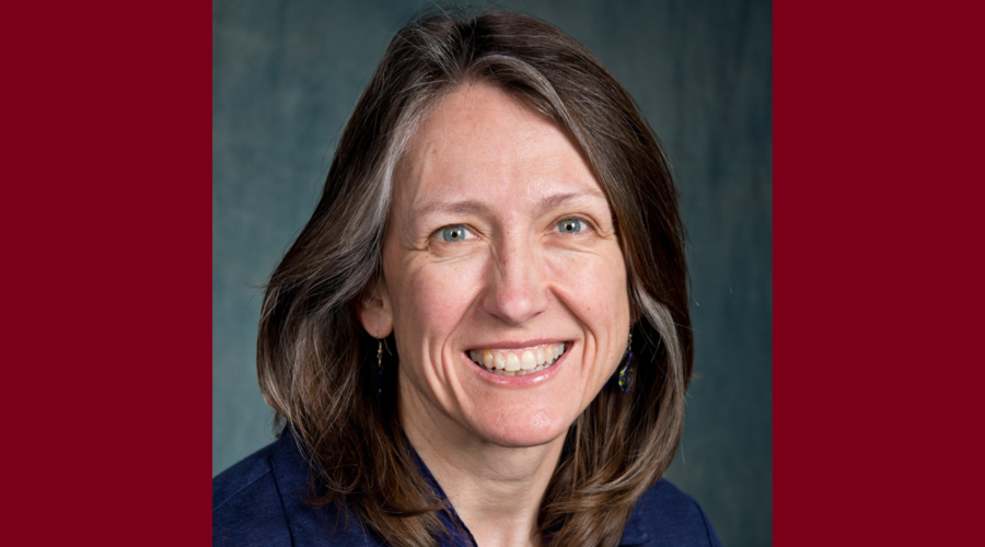 Catherine A. McCarty, PhD, MPH, MSB, HEC-C, professor and associate dean for research has been selected as the 2021-2022 Building Research Capacity (BRC) Program Fellow – a joint effort of North American Primary Care Research Group (NAPCRG) and the Associ