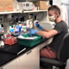 Venteicher lab manager Cullen Gaffy doing bench work